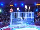 2014. 12. 14. Cirkuszban járt az 1.a osztály
