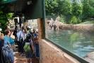 2016. 06. 03. Állatkertben a 3.a és 3.c osztály