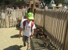 2019. 06. 12. Állatkertben járt az 1.a osztály