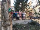 2020. 02. 12. Madáretetők kihelyezése az iskolaudvarra
